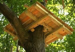 Treehouse Plans For Kids - tree platform kids garden pinterest