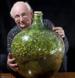 the fern and mossery 53 year old quot bottle garden quot terrarium