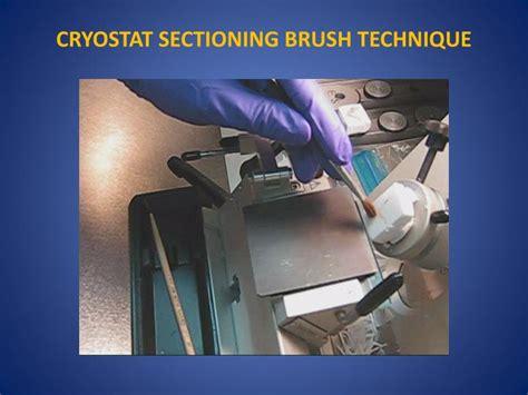 tissue sectioning methods ppt tissue freezing methods for cryostat sectioning