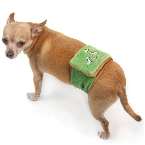 belly bands for dogs thing belly band