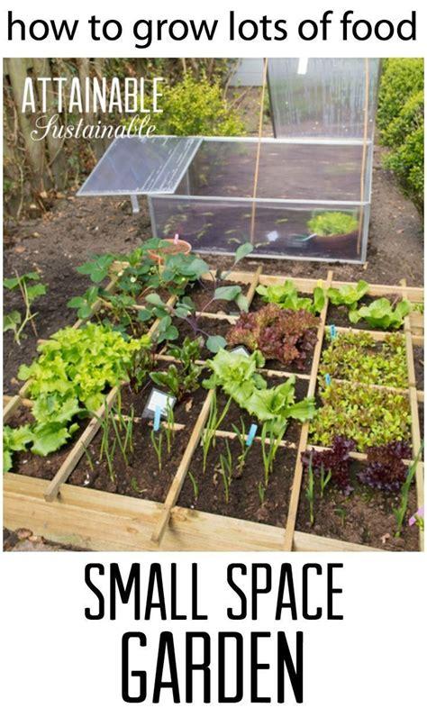 best 25 small vegetable gardens ideas on