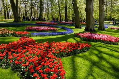 parco fiori olanda keukenhof amsterdam visita il pi 249 grande parco di tulipani