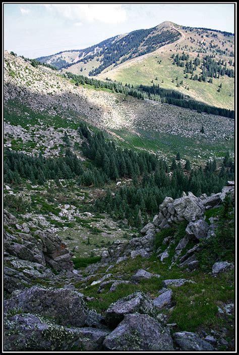 Soapstone Ridge soapstone ridge