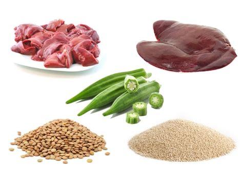alimento acido alimentos ricos em 225 cido f 243 lico