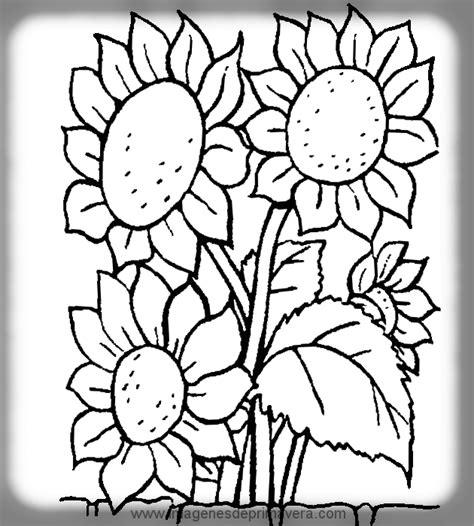 imagenes para pintar sobre la primavera din 225 micos y did 225 cticos dibujo de la primavera para