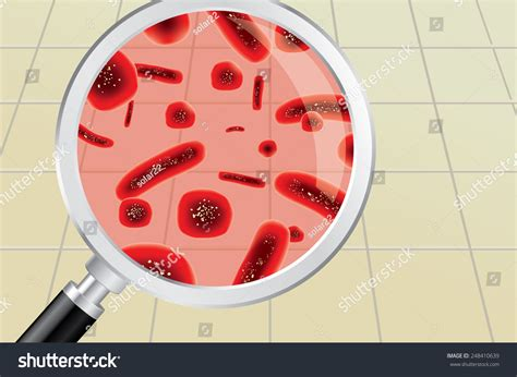 bathroom germs finding red germs bacteria on bathroom stock vector