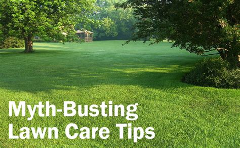 summer lawn care tips top 28 lawn care maintenance tips caring the top 5