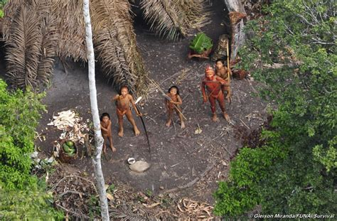 amazon tribe imperiled amazon indians make first contact with outsiders