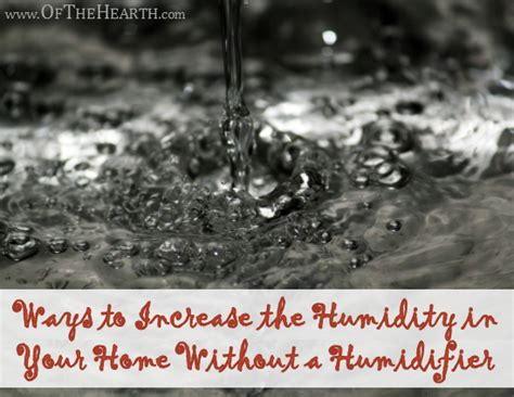 ways to increase the humidity in your home without a