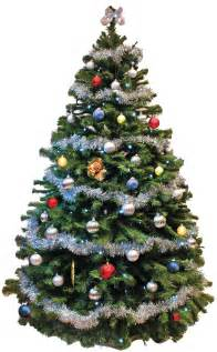 Don t forget your office christmas tree 171 shipshape cleaning news