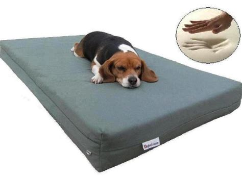 memory foam pet bed orthopedic 100 memory foam pad pet bed review dog obedience
