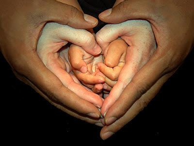 images of love hands love is in your hands bits of beauty