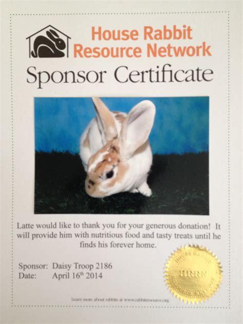 house rabbit network house rabbit network 28 images house rabbit resource network flickr rabbit