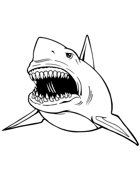 cool coloring pages of sharks great white shark coloring page h m coloring pages