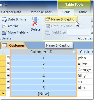 Table Caption by Caption Access 2010 Database Table Column Label
