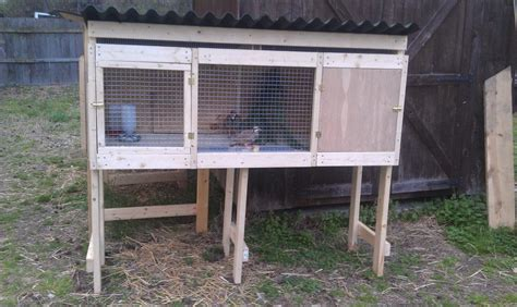 chukar and or quail pens and cages backyard chickens