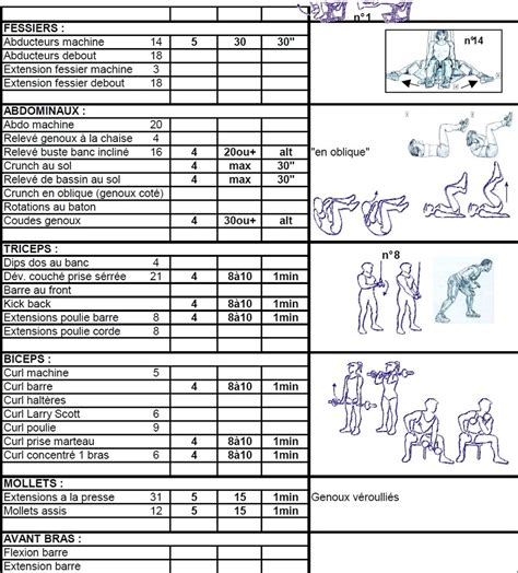 Programme Musculation Banc by Exercices De Musculation En Bodybuilding 6 176 Partie