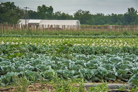 17 best images about farm credit on gardens