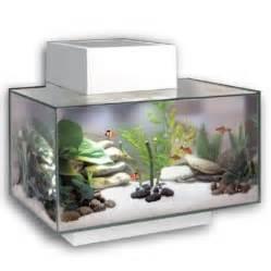 Aquarium Fluval Fluval Edge Aquarium White 23 Litre  Amazing Amazon