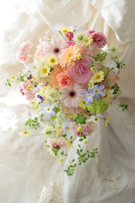 25  best ideas about August flowers on Pinterest   August