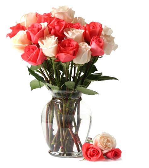 cura roselline in vaso efiorista in italia ti aiuta a consegnare o