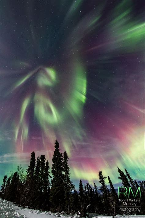 healy alaska northern lights 289 best images about northern lights on pinterest milky