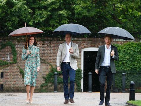 Dianas Sons Pay Homage At Concert by Prince William Prince Harry Pay Tribute To Princess Diana