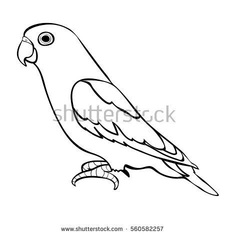 coloring pictures of lovebirds vector black white frog illustration stock vector