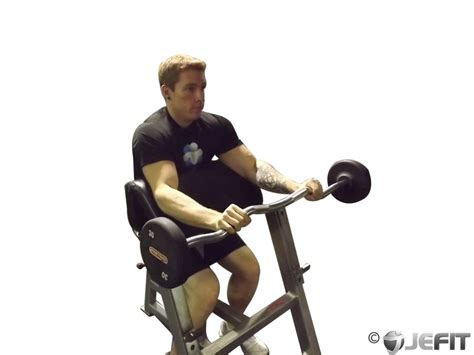 preacher bench exercises preacher bench ez bar curls