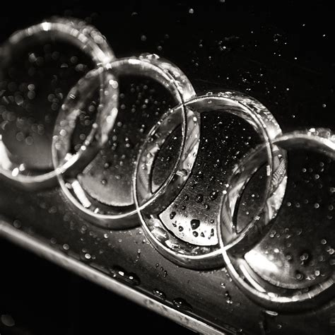 audi logo black and white download audi logo in black white hd wallpaper for