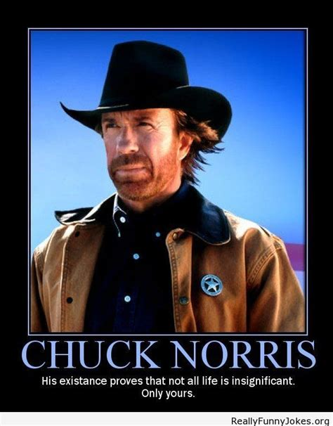 best chuck norris lines 69 best images about jokes on moma jokes