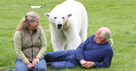 man   world    polar bear   pet