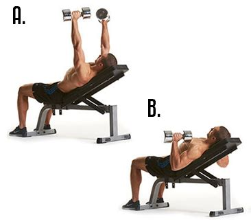 bench exercises with dumbbells image gallery incline db chest press