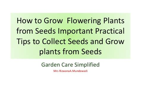 tips to grow hard to propagate plants how to grow flowering plants from seeds important tips