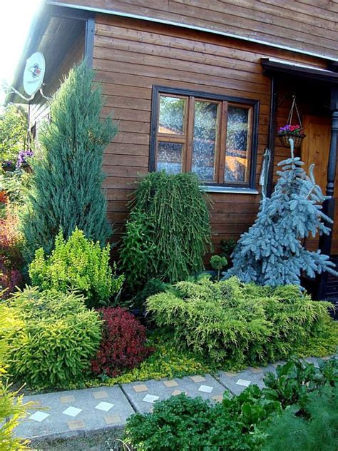 Evergreen Landscaping Ideas 17 Best Ideas About Evergreen Garden On Pinterest Evergreen Trees Evergreen Landscape And