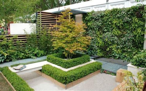 piante alte da terrazzo siepi da mettere in terrazzo siepi siepi da balcone