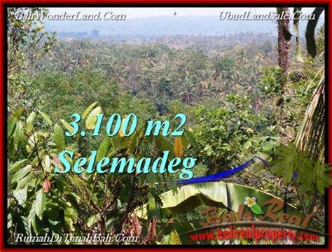 Jual Pomade Murah Di Bali investasi property jual tanah murah di tabanan tjtb222