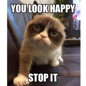 Make A Grumpy Cat Meme - how to make a grumpy cat meme grumpy cat memes no image