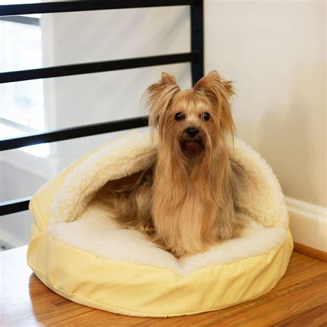 dog cave bed large dog cave bed uk large the best cave dog beds and costumes