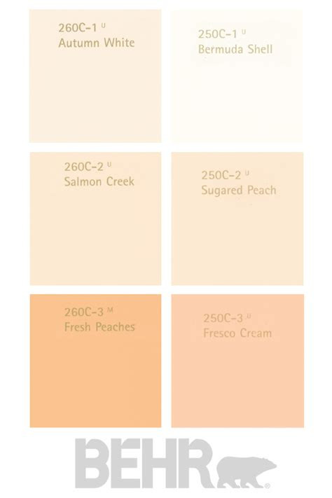 how to work with salmon paint shades such as apricot and terracotta