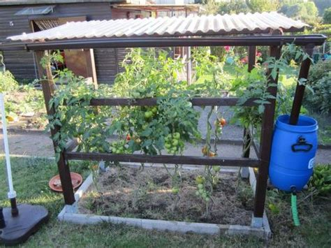 tomaten haus tomatenhaus obi selbstgemacht