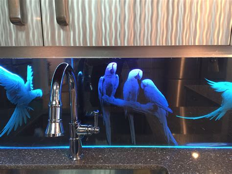 led back splash buy a hand made parrots theme custom etched glass led