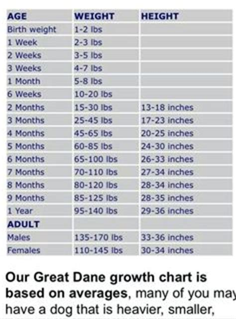 great dane puppy growth chart the top and puppy names of 2014 http www rover 2014 popular