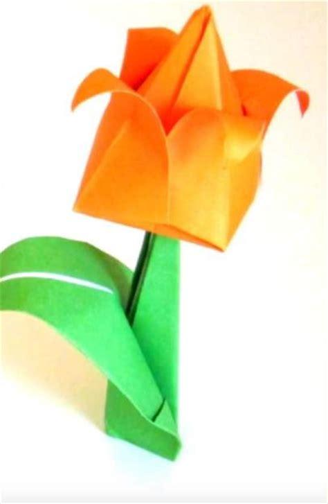 Orange Origami Paper - orange origami tulip allfreepapercrafts
