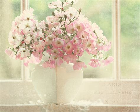 shabby chic flower photography by sylvia cook blog