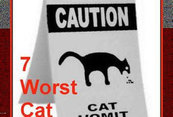 The 7 Worst Diets by The 7 Worst Foods You Can Feed Your Cat Paperblog