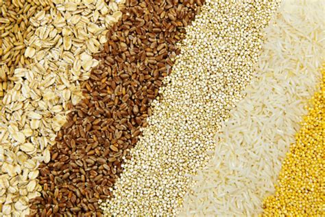 whole grain emanuel whole grains are beyond brown rice and whole wheat bread