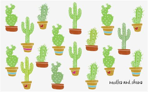 desk cactus succulent wallpaper free for pc and mobile