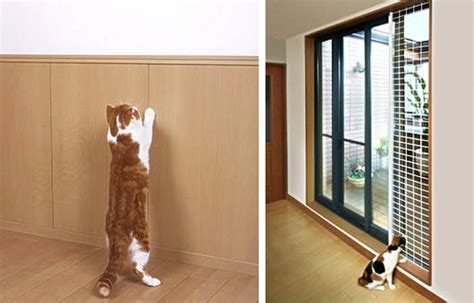 cat friendly house design unbelievable cat friendly house design from japan hauspanther