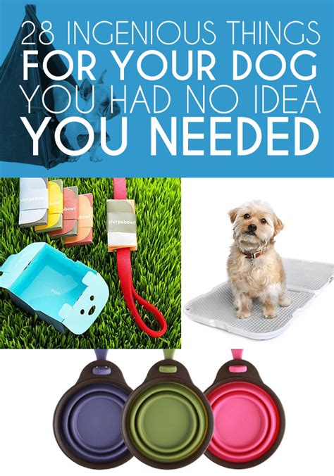 things to get for a new puppy 28 ingenious things for your you had no idea you needed